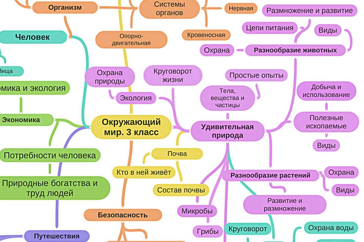 Майнд карты по школьной программе окружающий мир 1, 2 и 3 класс
